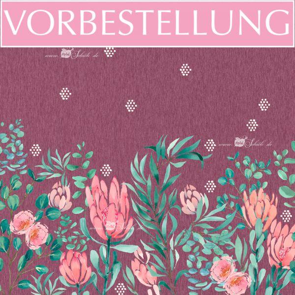 VORBESTELLUNG!!! Summer Proteas Beere BIO-Eigenproduktion (kbA)